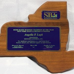 2008 SBA Award Winner